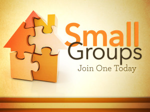 small groups_t